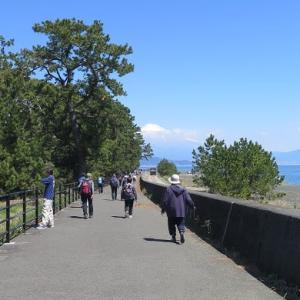 太平洋岸自転車道♪