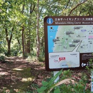 お散歩~周辺散策・静岡県立美術館♪