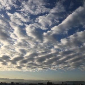 首都圏での「乳房雲」ですが、嵐の前触れとかも言われるので要注意ですね。