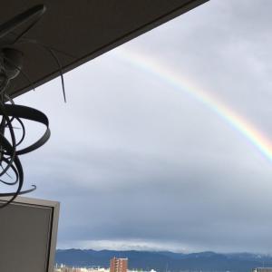 🌈 昨日の夕方とっても大きくて、綺麗な虹が出ていました。