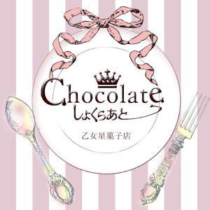 ■出展■乙女星菓子店 しょくらあと