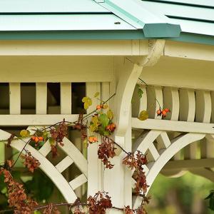 植物園の秋 長居植物園