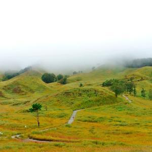 霧の砥峰高原 ②
