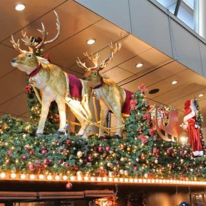 なんと6年振り!。六本木ヒルズ クリスマスマーケット2019に行きました。