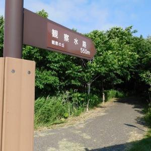 茨戸川緑地でバードウォッチング&石狩浜 '20.07.05