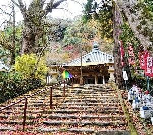 今年最後の紅葉撮影3(龍蔵寺)