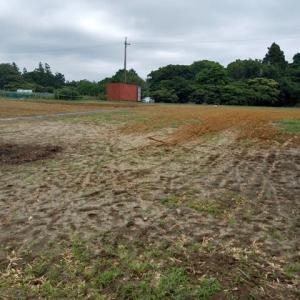 2021年6月14日 畑の手入れをしました。