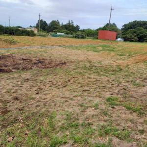2021年6月21日 畑の草取をしました。今日から新たな出発となりました。