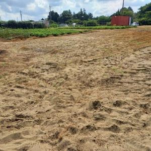 2021年8月2日 にんじん・大根等予定地へ苦土石灰を混ぜて耕しました。