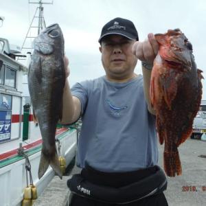 千葉県・江見沖のFサビキ~コマセ釣り。