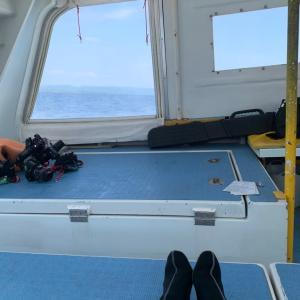 石垣島でダイビング・アドバンス講習