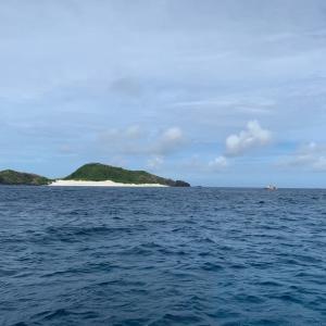 座間味の海で初めての慶良間ダイビング