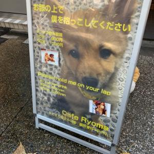 京都に行くも予定変更で会いたい人たちに