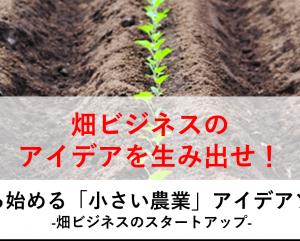 東京都の創業支援施設にて畑ビジネスのアイデアソンを開催決定!