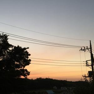 里山の晩夏・夜明け<季節のたより>