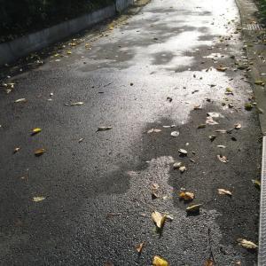 秋の気配?
