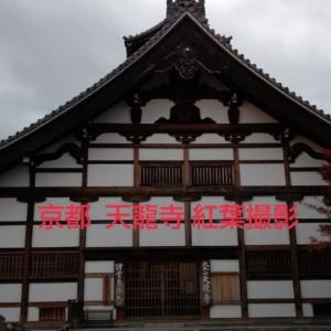 嵐山 天龍寺紅葉撮影