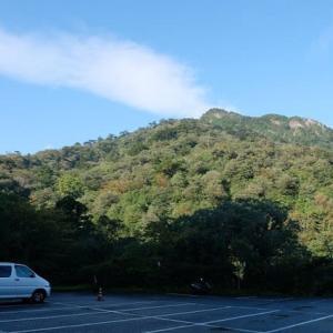雨上がりの景色がきれいだった【屋久島白谷雲水峡ガイドツアー】