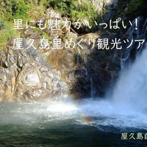 屋久島動画【里めぐり観光ツアー】屋久島は山や森だけではなく、里(麓)にも魅力がいっぱいですよ。