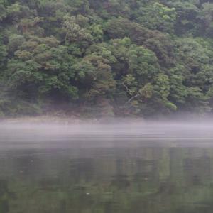 川面に浮かぶ靄が幻想的だった屋久島カヌーツアー