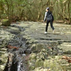 寒い冬には里の風景を楽しむのは如何?ついでに川エビも捕まえていました!【屋久島滝之川の一枚岩】