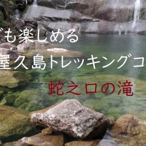 【屋久島動画】冬でも楽しめる屋久島のトレッキングコース・蛇之口の滝