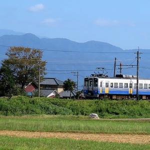 田んぼの中を走るえち鉄とFUKURAMU