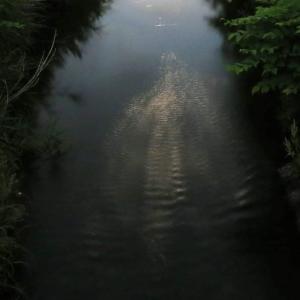 夜の小川にて