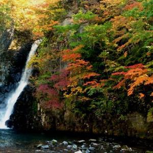 いま紅葉は 銚子の滝