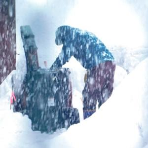 この冬は雪が少ないと言うけれど