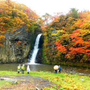 黄葉の盛りをまとった滝