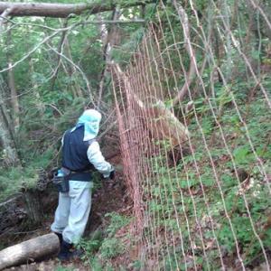 沢底生産森林組合防猪網点検作業