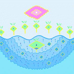 魔法の素=宇宙光水≒香水