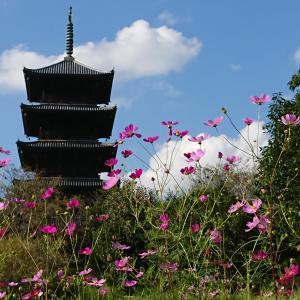 Go  to  神社・仏閣巡り