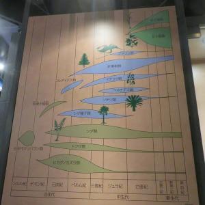 神奈川県立 生命の星・地球博物館