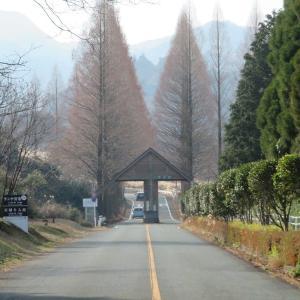 アスペクタの冬景色