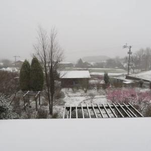 雪の南阿蘇