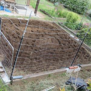 畝を作り、畝にマルチ・シートを張る