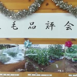 立毛品評会3位入賞!