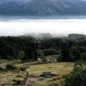 今日は雲海がでていたのと、東洋医学とミェフの話と狐に聞くと