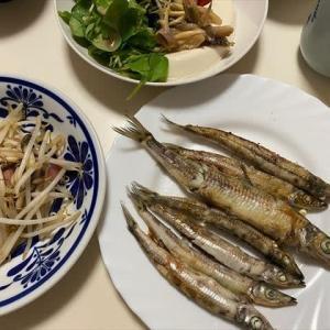 9/24メギスの塩焼きで夕ご飯