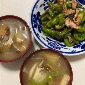 しし唐の炒め物と鍋