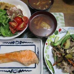 9/24塩鮭の夕ご飯