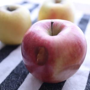 GOTO軽井沢・セカンド〜お土産にリンゴをいただく〜