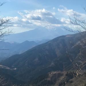 丹沢大山山頂1252Mまでの見晴らし!