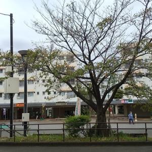 鶴川団地・ホームベーカリーFujiya(ふじや) カラシパンがあるよ♪