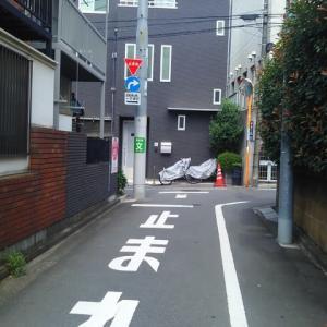 東京ゲーテ記念館に再遭遇した。