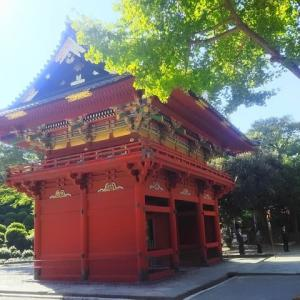 秋の根津神社/2019年-1