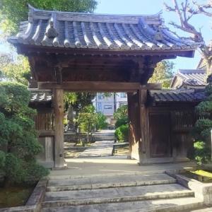 陽射しの下に佇む稲荷神社