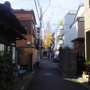 千住本氷川神社に行き当たる。